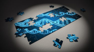 A partially-assembled jigsaw puzzle with a picture of DNA
