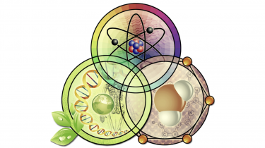 Clip art of three circles bearing DNA, an atomic structure, a water molecule, a human skeleton, and a globe